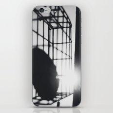 feed the birds iPhone & iPod Skin