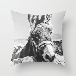 DONKEY / Spain Throw Pillow