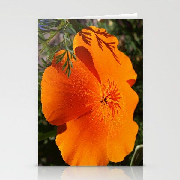 Brilliant California Poppy Stationery Cards