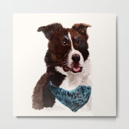 Chip the Border Collie Metal Print