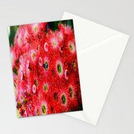 Flowering Gum Stationery Cards