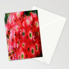 Flowering Gum Stationery Cards