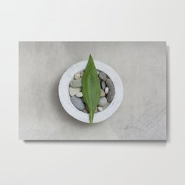 Zen Stone And Leaf Metal Print