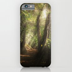 Lost In the Light iPhone 6s Slim Case