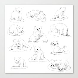 White bear cub Canvas Print