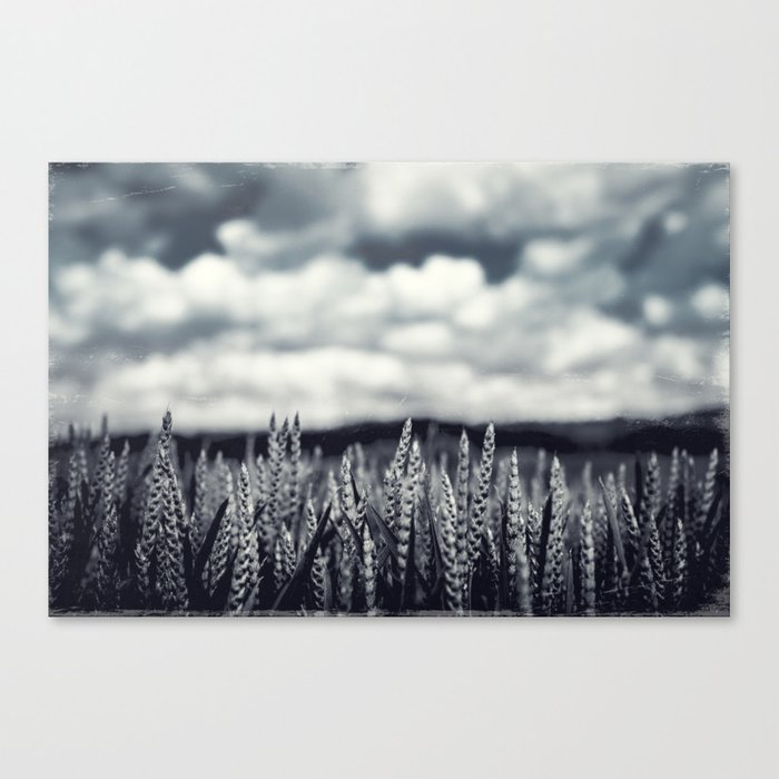 Our Daily Bread - Crop Canvas Print