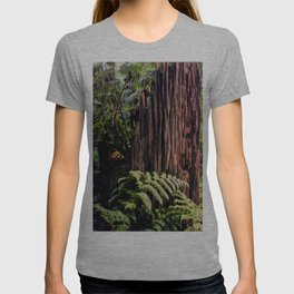 Rotting Wood T-shirt