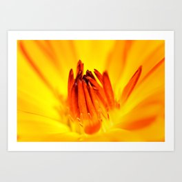 With Time (Original Orange) Art Print