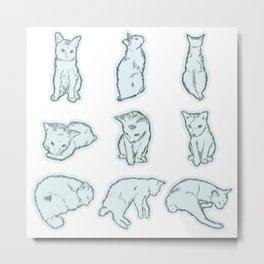 Cat's daily life 2 Metal Print