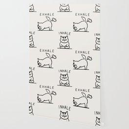 Inhale Exhale Cat Wallpaper