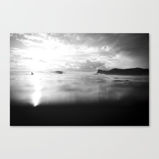 Ponga Canvas Print