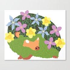 Spring Hedgehog Canvas Print