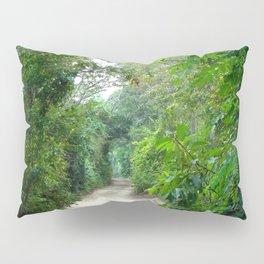 Lover's Arch, Cape Cod Pillow Sham