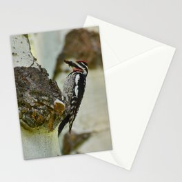 Grand Tetons Woodpecker - Grand Teton National Park Stationery Cards