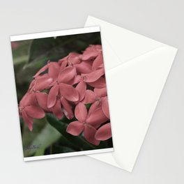 Jungle Flame Stationery Cards
