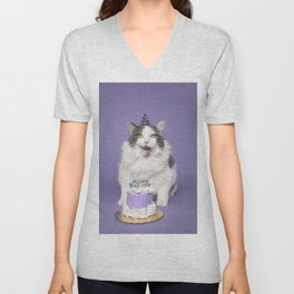 Happy Birthday Fat Cat In Party Hat With Cake Unisex V-Neck