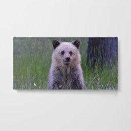 The most adorable grizzly bear cub in Jasper National Park | Canada Metal Print
