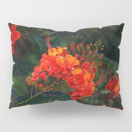 Desert Fall Colors III Pillow Sham