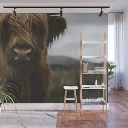 Scottish Highland Cattle Wall Mural