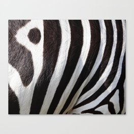 """Pop Safari 01 Zebra"" Canvas Print"