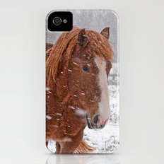 Horse in the snow iPhone (4, 4s) Slim Case