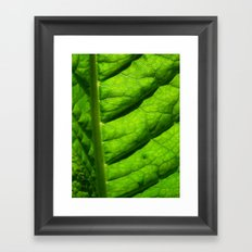 green leaf Framed Art Print