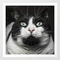 kitty Art Prints featuring Kitty Cat by Joao Bizarro