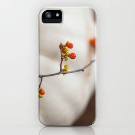 Bittersweet iPhone Case