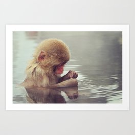 Cute-icle cleaning. Young Snow Monkey Japan Art Print