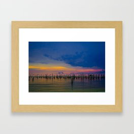 Pelicans 2 Framed Art Print