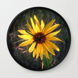 Wild Sunflower Wall Clock
