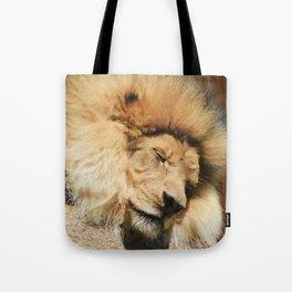 Sleeping Beast Tote Bag