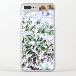Platinum Purple Trichs OG Kush x Purple Urkle Strains Clear iPhone Case