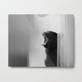 Rock Cat Metal Print