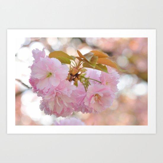 Dreaming of Spring Art Print