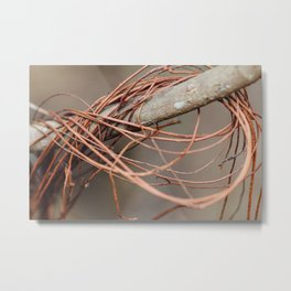 Wrapped Vines Metal Print