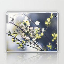 Backlight Blooms Laptop & iPad Skin