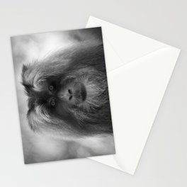I'm Watching You Too! Stationery Cards