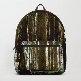Rainbow Swamp Backpack