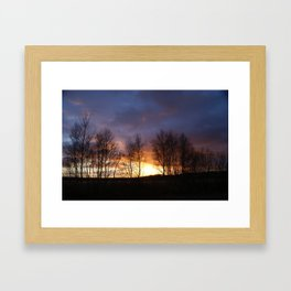 Trees at sunset Framed Art Print