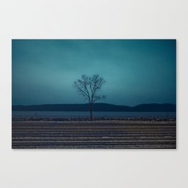 """TO COLD SPRING"" Canvas Print"