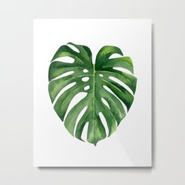 Tropical green leaf. Metal Print