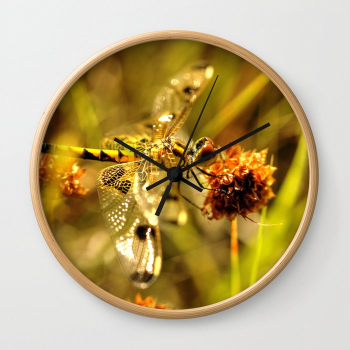 Black-tailed Skimmer Dragonfly Wall Clock