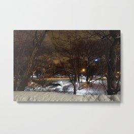 Dark Central Park Metal Print