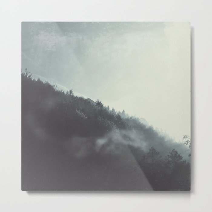 Damp Wilderness Metal Print