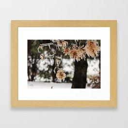 Winter Trees. Framed Art Print