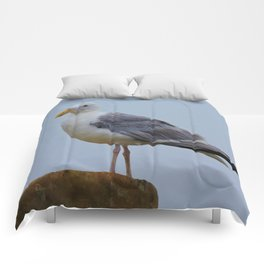Regal Seagull Comforters