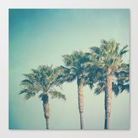 palms Canvas Prints featuring Palms by Laura Ruth