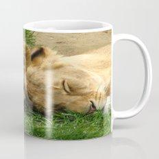 Asian Lions (Panthera leo persica) Mug