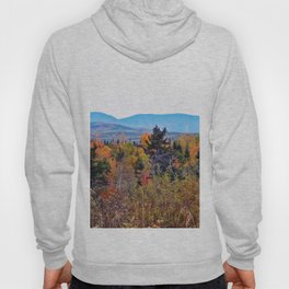 Mont Albert and the Painted Forest Hoody